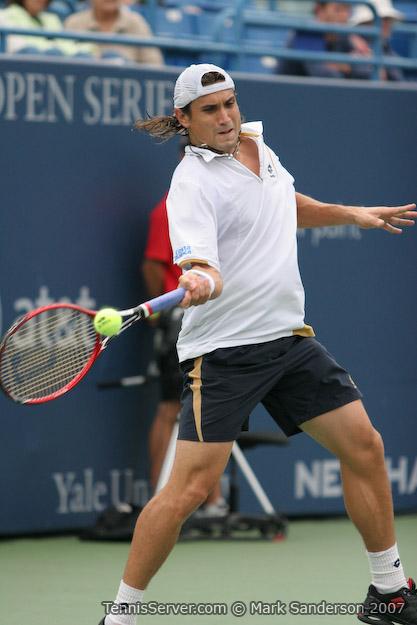 Tennis - David Ferrer